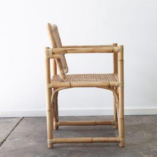 Cane Campaign chair