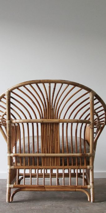 Royal Palm Armchair natural back TB_LS