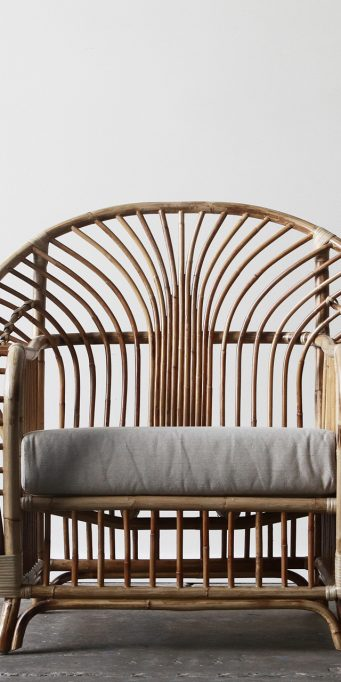 Royal palm armchair_front_natural_LS