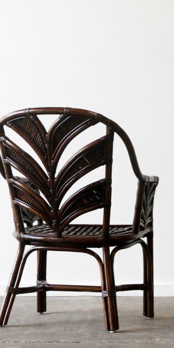 Tropicool armchair dark Brown back_LS